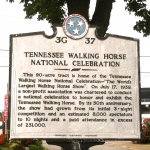 """2015 CITIZENS INITIATIVE CAMPAIGN AGAINST ANIMAL CRUELTY OF ""BIG LICK"" TENNESSEE WALKING HORSE ROARS THROUGH SOUTH – NOW CALLS ON TENNESSEE AND AMERICA TO BOYCOTT THE 2015 ""BIG LICK"" TENNESSEE WALKING HORSE NATIONAL CELEBRATION"