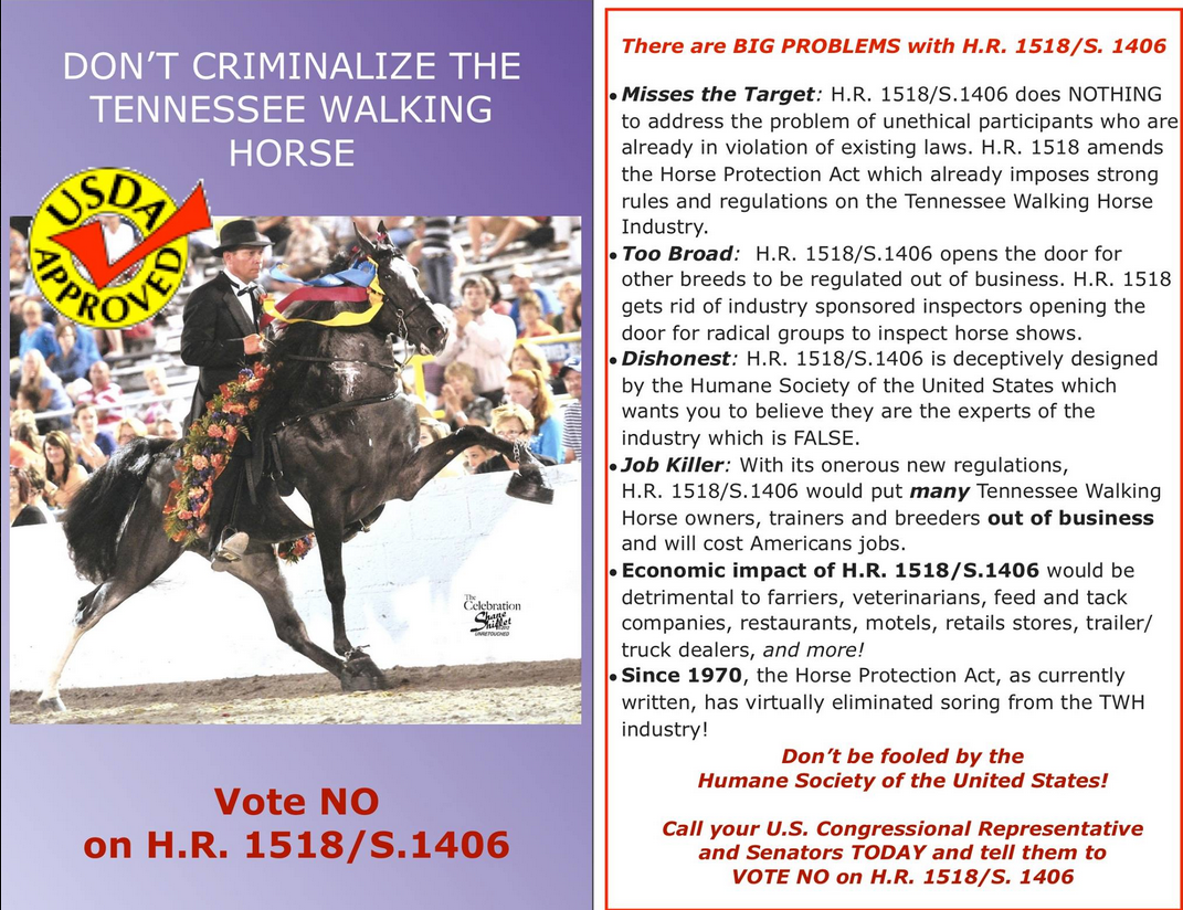 the economic impact of the horse industry essay The north, by contrast, was well on its way toward a commercial and manufacturing economy, which would have a direct impact on its war making ability by 1860, 90 percent of the nation's manufacturing output came from northern states.