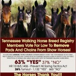THIS AD NEEDS TO RUN AND THE MEMBERS OF CONGRESS AND THE REST OF AMERICA AND THE WORLD NEED TO KNOW THAT 63% OF TENNESSEE WALKING HORSE BREED REGISTRY MEMBERS VOTED IN A LANDSLIDE TO REMOVE THE PADS AND CHAINS FROM THE TENNESEE WALKING SHOW HORSES
