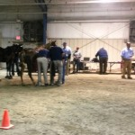 LOUISE'S FRIDAY NIGHT TRAINERS SHOW REPORT – USDA GETS DOWN TO BUSINESS – ONLY 88 HORSES IN 21 CLASSES – BUT STILL LOTS OF BAD IMAGE AND SOME MEMORABLE EVENTS