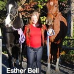 "SOUND HORSE ADVOCATE,  LIFELONG TENNESSEAN,  ESTHER BELL ELOQUENTLY EXPLAINS ""WALK ON WASHINGTON"" IN INTERVIEW WITH MIDDLE TENNESSEE PUBLIC RADIO STATION WMOT – ""ANTI HORSE SORING ADVOCATES PLAN 'WALK ON WASHINGTON'"""