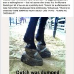 "IF SCARRED ABUSED ""DUTCH"" IS NOT A TENNESSEE WALKING HORSE, THEN NEITHER IS WORLD GRAND CHAMPION ""I AM JOSE"" – WONDER WHO SOME OF THE COMMON RELATIVES ARE – $1,000 REWARD OFFERED BY WWW.BILLYGOBOY.COM"