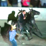 "BOMBSHELL SCANDAL R0CKS SORE BIG LICK WORLD – ShelbyvilleNOW REPORTS 2014 WORLD GRAND CHAMPION ""I AM JOSE"" – STRIPPED OF WINNING AND FINED FOR VIOLATING BLOOD TEST PROTOCOLS – #PASSTHEPASTACT"