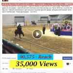 THE SORE WORLD OF GEN'S ICE GLIMMER  – AMERICA'S TENNESSEE WALKING HORSE (c)  –  TORTURED AT MTSU – RESONATES AROUND THE WORLD – OVER 108,000 PEOPLE REACHED IN 23 HOURS