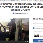 "NEW CHANGE.ORG PETITION ASKS PANAMA CITY BEACH TOURISM BOARD TO ""NOT GIVE ONE DIME"" TO ORGANIZERS OF ""BIG LICK"" GULF COAST CHARITY HORSE TO ""MARKET AND PROMOTE"" BIG LICK ANIMAL CRUELTY IN THE NAME OF TOURISM"