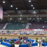 """BIG LICK"" ANIMAL CRUELTY LIMPS OUT OF THE GATE BEFORE EMPTY SEATS ON THURSDAY NIGHT AT MISSISSIPPI CHARITY HORSE SHOW IN JACKSON, MISSISSIPPI"