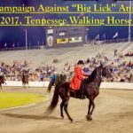 "Tennesseans BOYCOTT Animal Cruelty To ""Big Lick"" Tennessee Walking Horses At The 2017 Tennessee Walking Horse National Celebration"