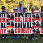 "CCABLAC (Citizens Campaign Against ""Big Lick"" Animal Cruelty) Protest And Call For ""BOYCOTT"" Empties Stands At Asheville, NC ""Big Lick"" Tennessee Walking Horse Show – Western NC AG Center"